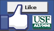 Facebook Page Like Button
