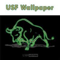 Free-Download_USF Wallpaper