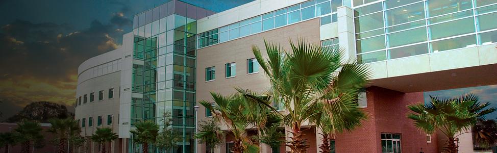 USF Alumni - Clinical Psychology